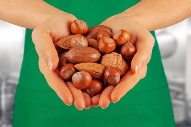 Sirovi lešnik bolji od leka: Najbolji izvor vitamina B, E, solne kiseline i zdravih masnoća!