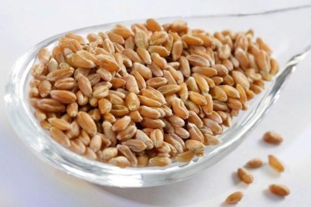 Čudo iz kuhinje: Ovo seme snižava holesterol i poboljšava probavu!