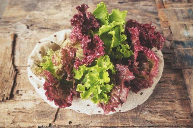 Lolo roso salata je neverovatno zdrava: Poboljšava vid, čisti kožu, eliminiše ćelije raka!