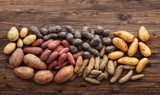Nutricionisti otkrivaju: kakav krompir ne smemo jesti, a kakav je najbolji za ishranu