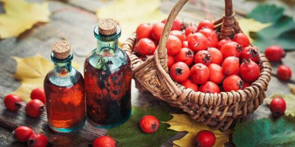Glogove kapi – ljekovitost, izrada i nuspojave