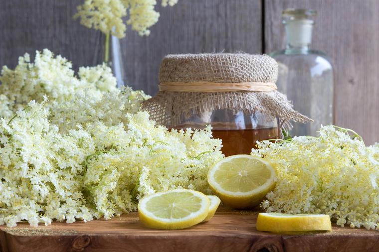 Lekovite moći zove: Ovako se pravi sok, med i čaj koji pomaže kod najtežih bolesti! (RECEPT)