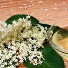 Bazga kao lijek – donosimo recepte za sirup i čaj